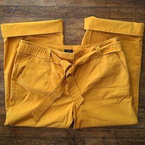 Ann Taylor pants size 14